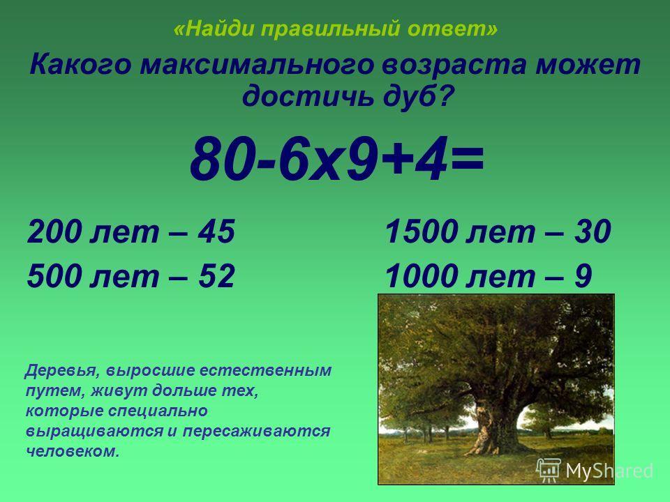 «Найди правильный ответ» Какого максимального возраста может достичь дуб? 80-6х9+4= 200 лет – 45 1500 лет – 30 500 лет – 52 1000 лет – 9 Деревья, выросшие естественным путем, живут дольше тех, которые специально выращиваются и пересаживаются человеко