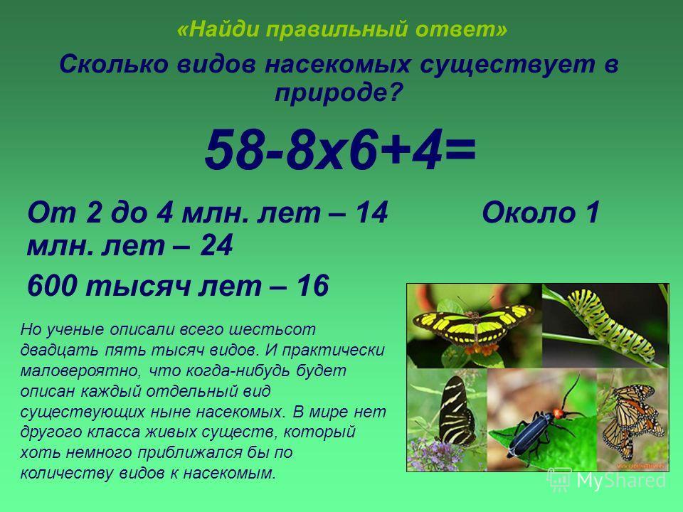 «Найди правильный ответ» Сколько видов насекомых существует в природе? 58-8х6+4= От 2 до 4 млн. лет – 14 Около 1 млн. лет – 24 600 тысяч лет – 16 Но ученые описали всего шестьсот двадцать пять тысяч видов. И практически маловероятно, что когда-нибудь