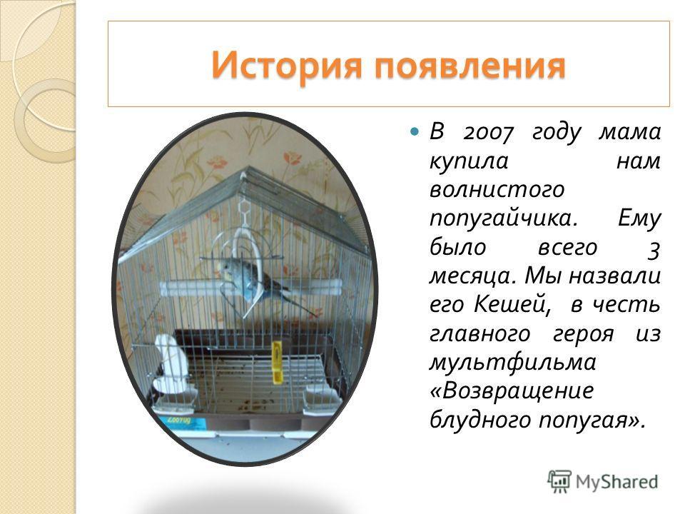 Подготовила ученица 1 класса Ким Юлдуз 2012 г. МКОУ « Липковская СОШ 3»