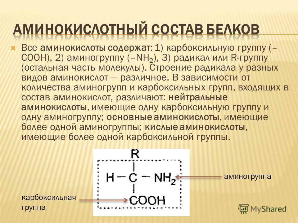 Все аминокислоты содержат: 1) карбоксильную группу (– СООН), 2) аминогруппу (–NH 2 ), 3) радикал или R-группу (остальная часть молекулы). Строение радикала у разных видов аминокислот различное. В зависимости от количества аминогрупп и карбоксильных г