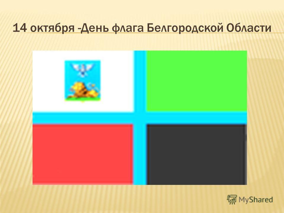 14 октября -День флага Белгородской Области