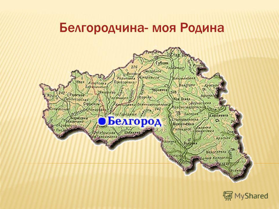 Белгородчина- моя Родина