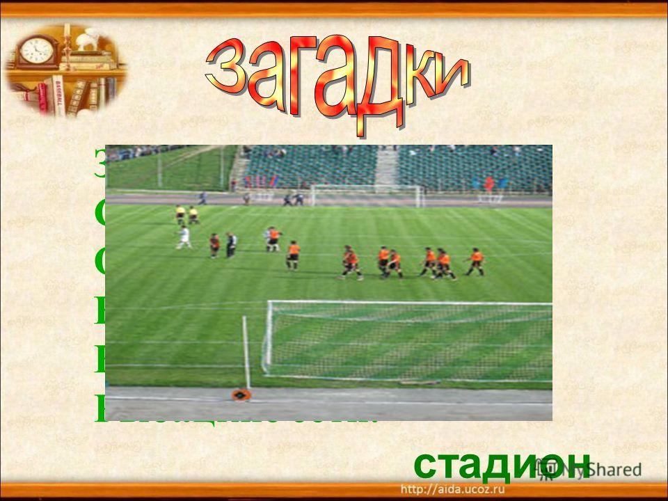 Зеленый луг, Сто скамеек вокруг, От ворот до ворот Бойко бегает народ. На воротах этих Рыбацкие сети. стадион