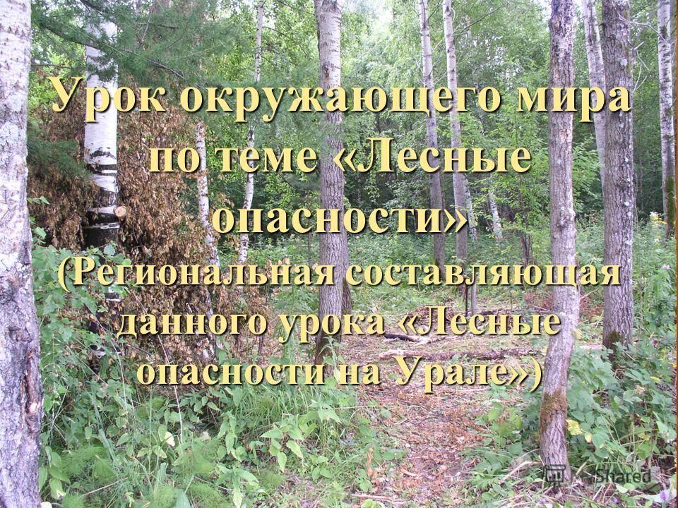 Урок окружающего мира по теме «Лесные опасности» (Региональная составляющая данного урока «Лесные опасности на Урале»)