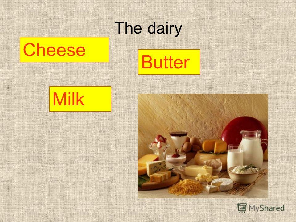 The dairy Butter Milk Cheese
