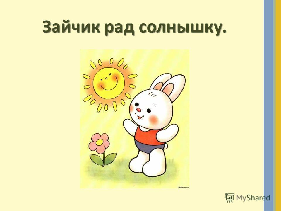 Зайчик рад солнышку.