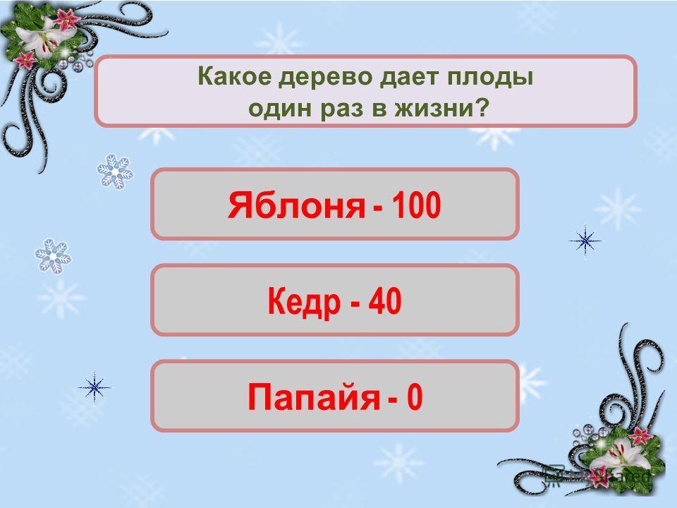 Яблоня - 100 Кедр - 40 Папайя - 0 Какое дерево дает плоды один раз в жизни?