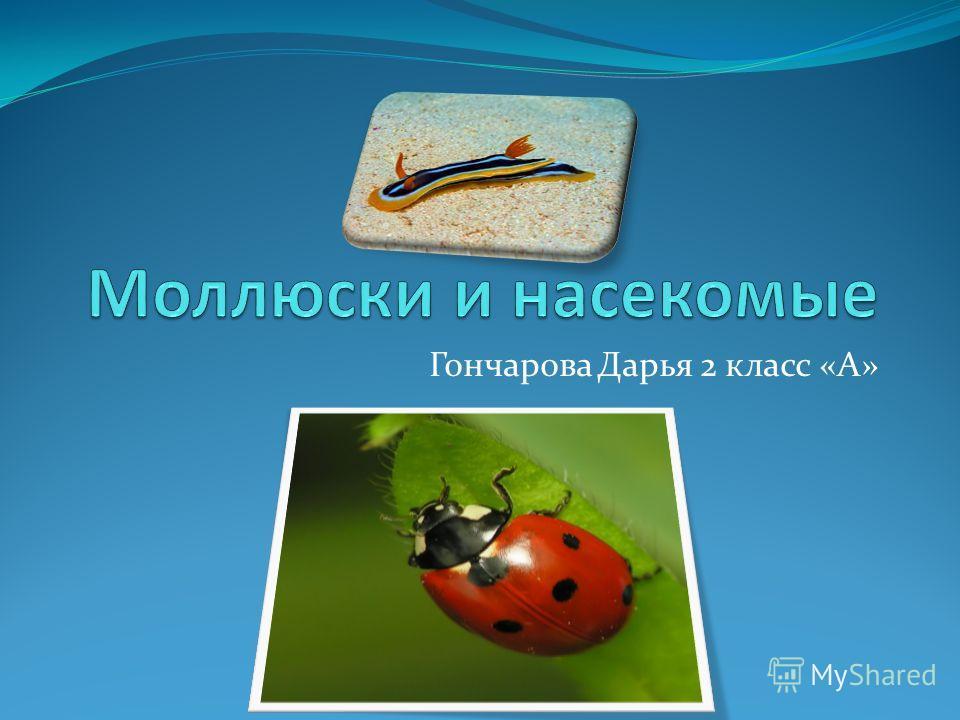 Гончарова Дарья 2 класс «А»