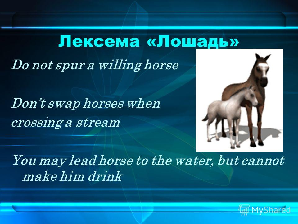 Лексема «Лошадь» Do not spur a willing horse Dont swap horses when crossing a stream You may lead horse to the water, but cannot make him drink