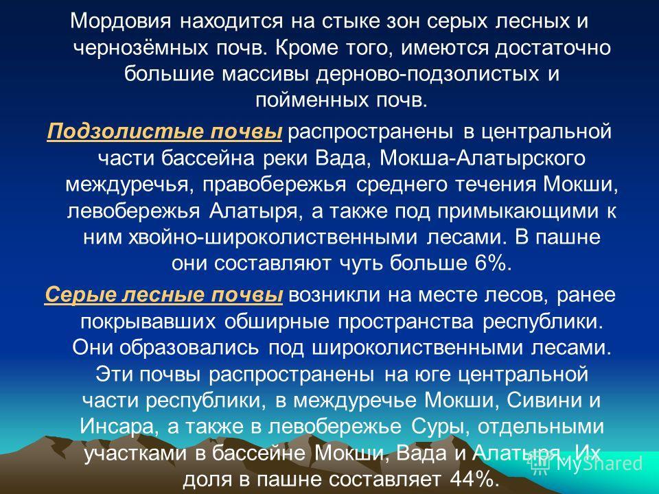 Мордовия находится на стыке зон серых лесных и чернозёмных почв. Кроме того, имеются достаточно большие массивы дерново-подзолистых и пойменных почв. Подзолистые почвы распространены в центральной части бассейна реки Вада, Мокша-Алатырского междуречь