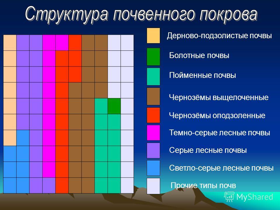 Дерново-подзолистые почвы Светло-серые лесные почвы Серые лесные почвы Темно-серые лесные почвы Чернозёмы оподзоленные Чернозёмы выщелоченные Пойменные почвы Болотные почвы Прочие типы почв