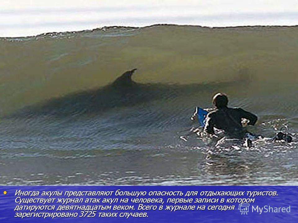 Иногда акулы представляют большую опасность для отдыхающих туристов. Существует журнал атак акул на человека, первые записи в котором датируются девятнадцатым веком. Всего в журнале на сегодня зарегистрировано 3725 таких случаев. Иногда акулы предста