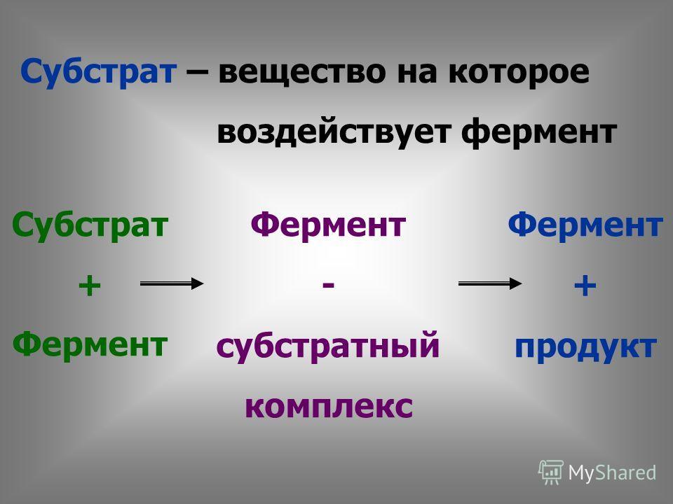 Субстрат – вещество на которое воздействует фермент Субстрат + Фермент - субстратный комплекс Фермент + продукт