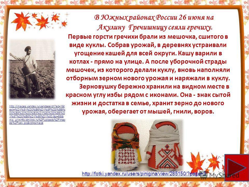 В Южных районах России 26 июня на Акулину Гречишницу сеяли гречиху. Первые горсти гречихи брали из мешочка, сшитого в виде куклы. Собрав урожай, в деревнях устраивали угощение кашей для всей округи. Кашу варили в котлах - прямо на улице. А после убор