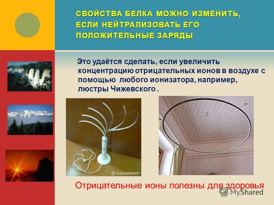 СВОЙСТВА БЕЛКА МОЖНО ИЗМЕНИТЬ, ЕСЛИ НЕЙТРАЛИЗОВАТЬ ЕГО ПОЛОЖИТЕЛЬНЫЕ ЗАРЯДЫ Это удаётся сделать, если увеличить концентрацию отрицательных ионов в воздухе с помощью любого ионизатора, например, люстры Чижевского. Отрицательные ионы полезны для здоров