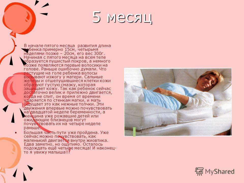 5 месяц В начале пятого месяца развития длина ребенка примерно 15см, четырьмя неделями позже – 20см, его вес 300г. Начиная с пятого месяца на всем теле образуется пушистый покров, а немного позже появляются первые волосики на голове. Раньше ошибочно