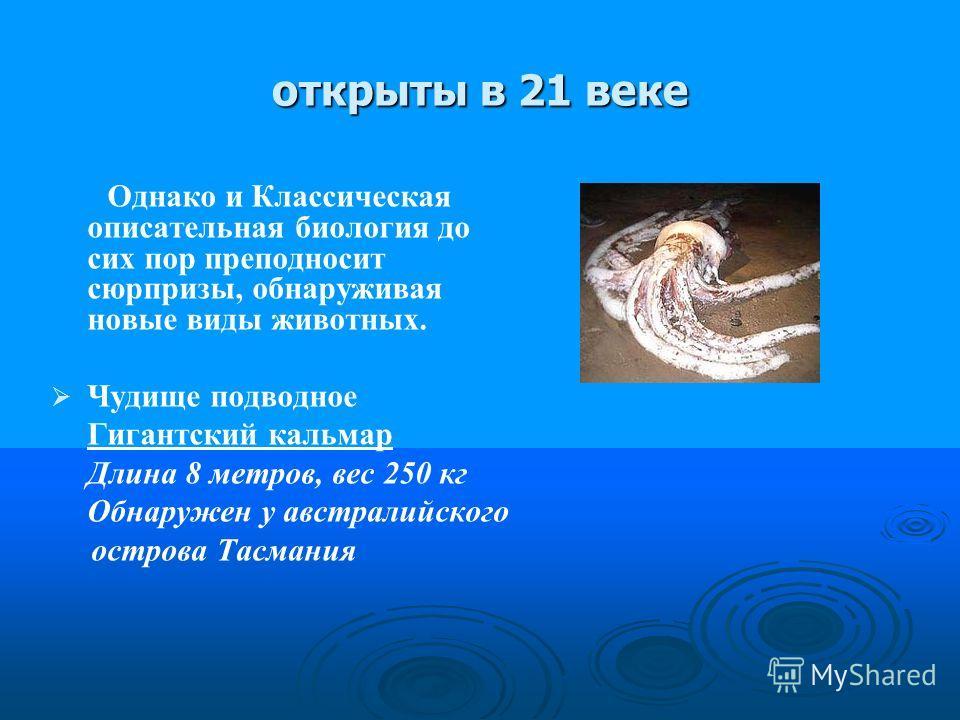 открыты в 21 веке Однако и Классическая описательная биология до сих пор преподносит сюрпризы, обнаруживая новые виды животных. Чудище подводное Гигантский кальмар Длина 8 метров, вес 250 кг Обнаружен у австралийского острова Тасмания
