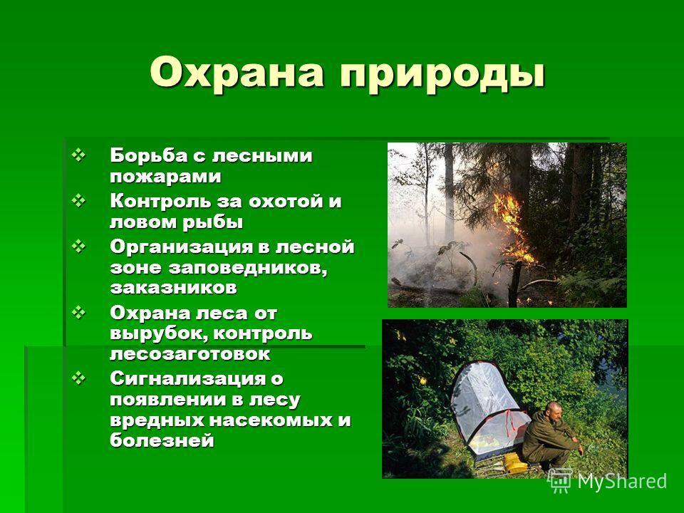 Охрана природы Борьба с лесными пожарами Борьба с лесными пожарами Контроль за охотой и ловом рыбы Контроль за охотой и ловом рыбы Организация в лесной зоне заповедников, заказников Организация в лесной зоне заповедников, заказников Охрана леса от вы