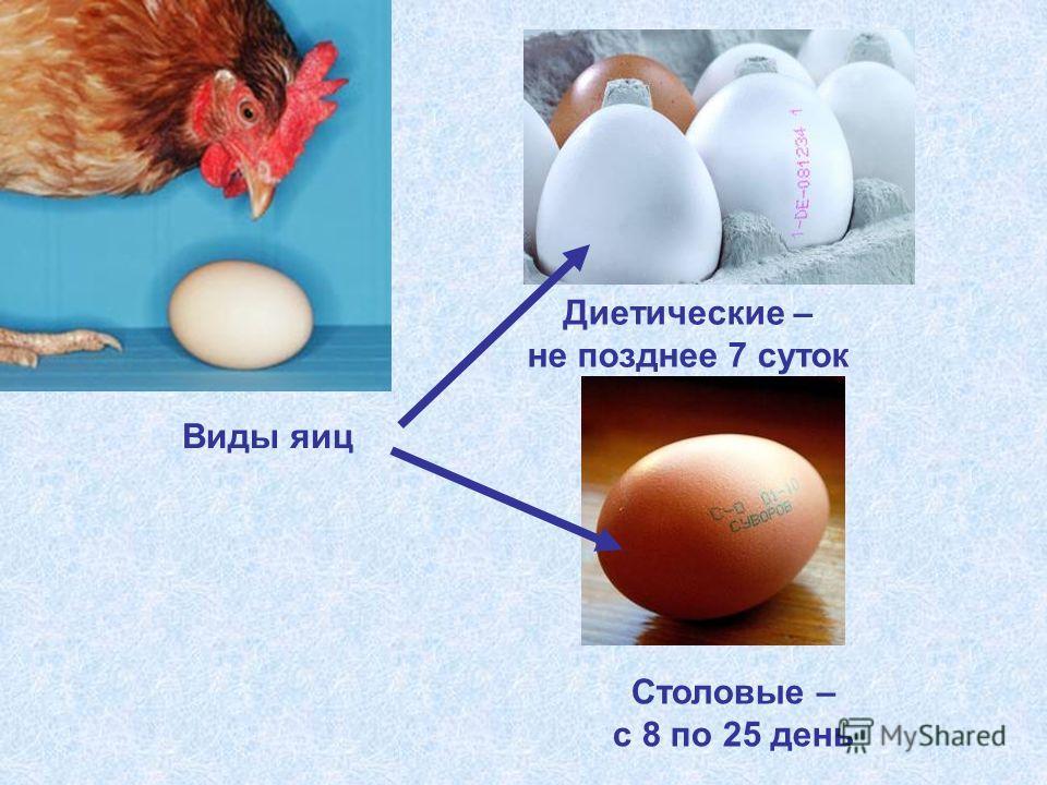 Столовые – с 8 по 25 день Диетические – не позднее 7 суток Виды яиц