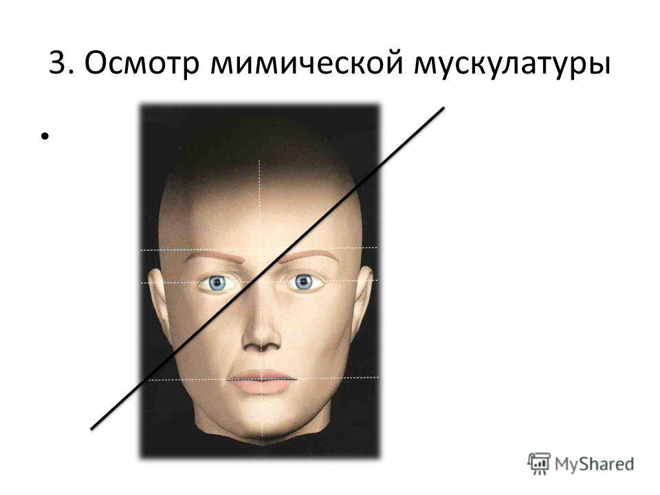 3. Осмотр мимической мускулатуры
