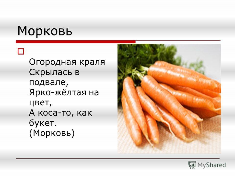 Морковь Огородная краля Скрылась в подвале, Ярко-жёлтая на цвет, А коса-то, как букет. (Морковь)