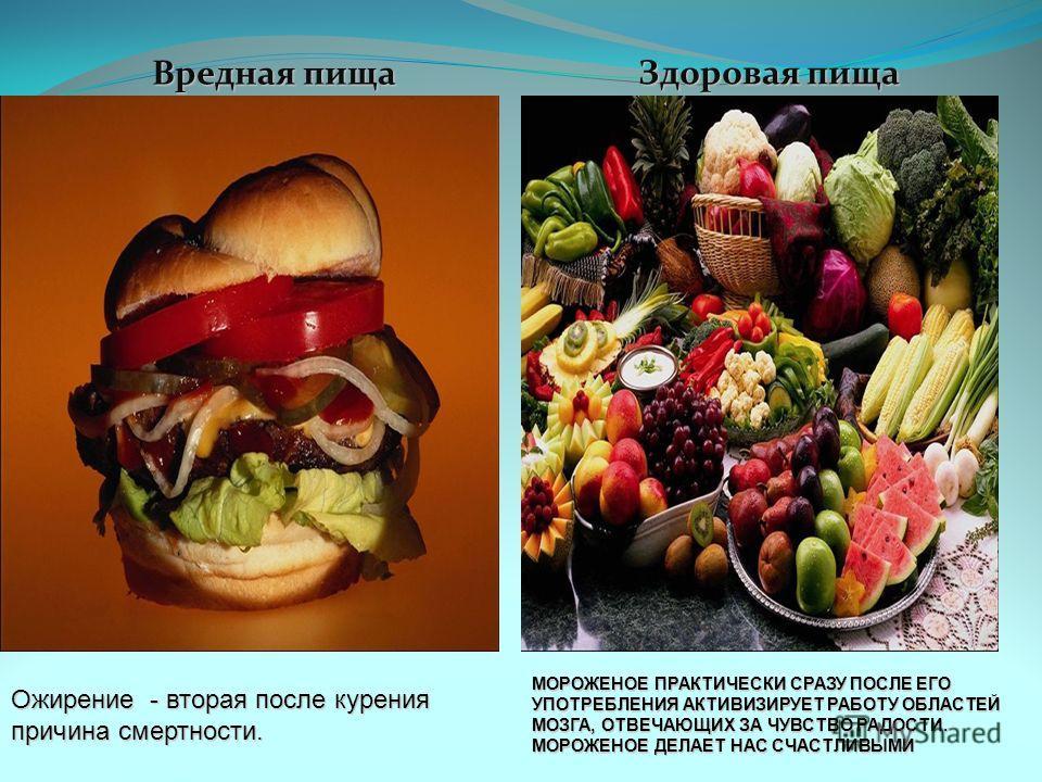 бесалатные секции для детей василеостровский район