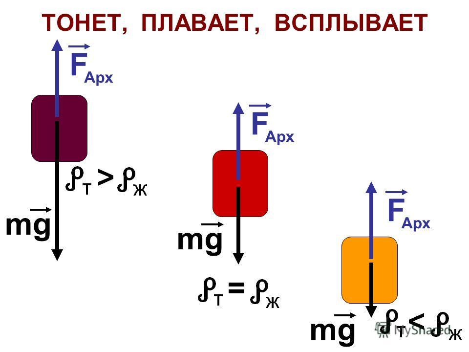 ТОНЕТ, ПЛАВАЕТ, ВСПЛЫВАЕТ F Арх F F mg