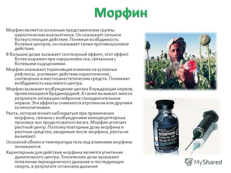 Морфин является основным представителем группы наркотических анальгетиков. Он оказывает сильное болеутоляющее действие. Понижая возбудимость болевых центров, он оказывает также противошоковое действие. В больших дозах вызывает снотворный эффект, этот