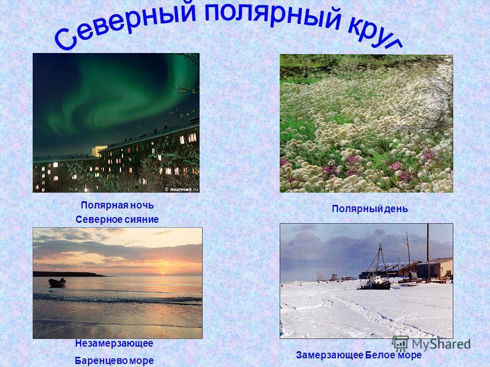 Полярная ночь Северное сияние Незамерзающее Баренцево море Полярный день Замерзающее Белое море