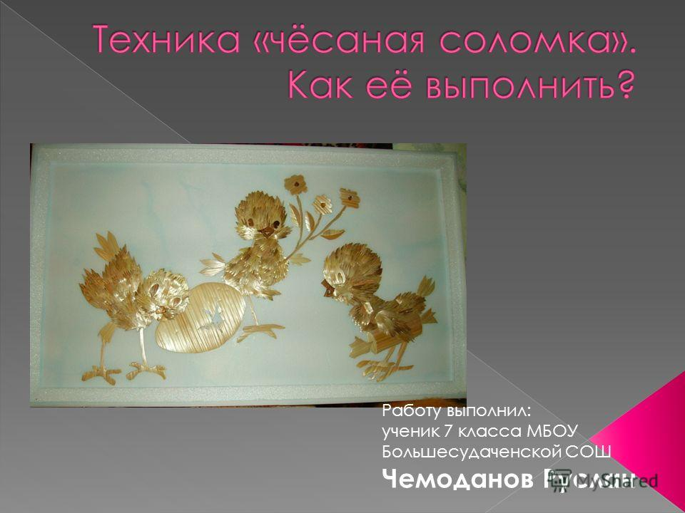 Работу выполнил: ученик 7 класса МБОУ Большесудаченской СОШ Чемоданов Руслан