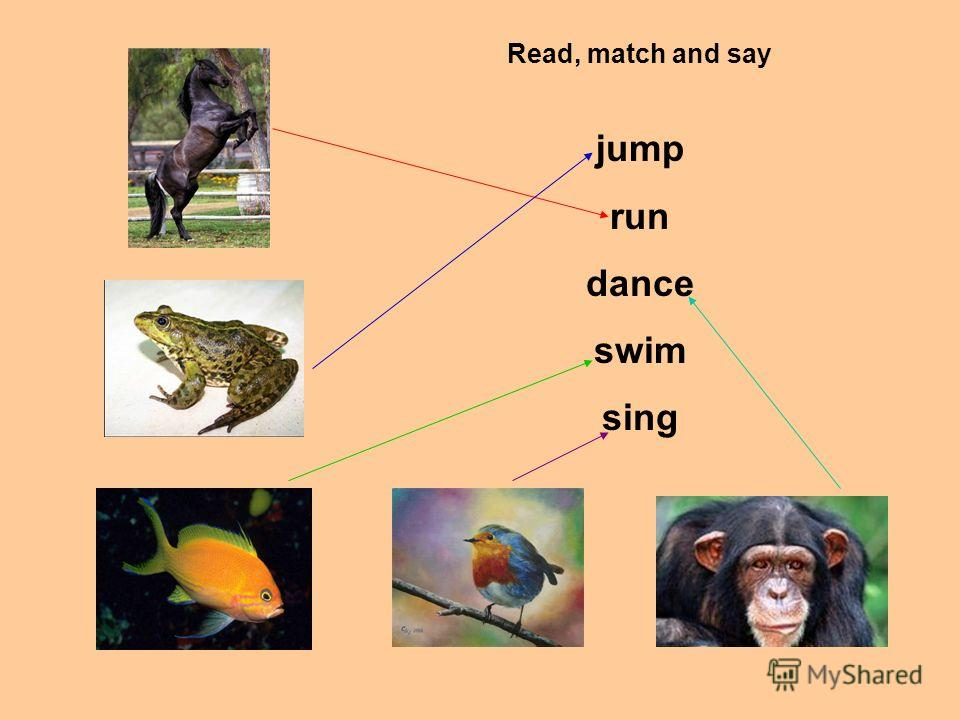 Read, match and say jump run dance swim sing