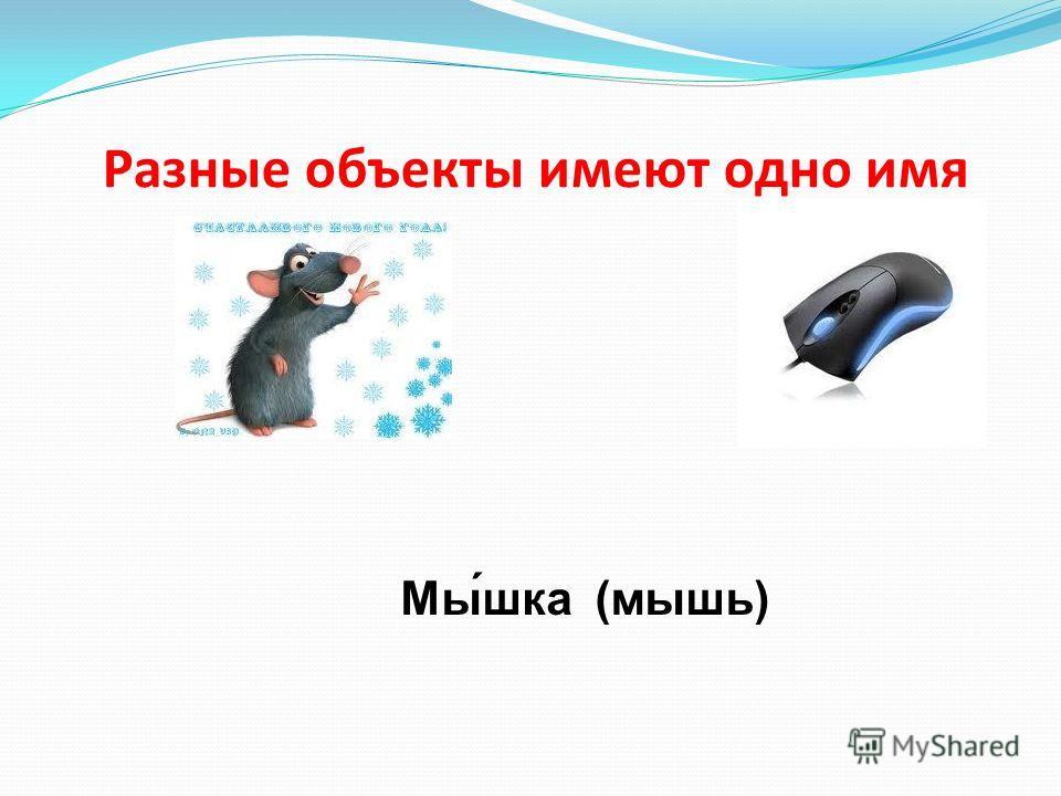 Разные объекты имеют одно имя Мы́шка (мышь)