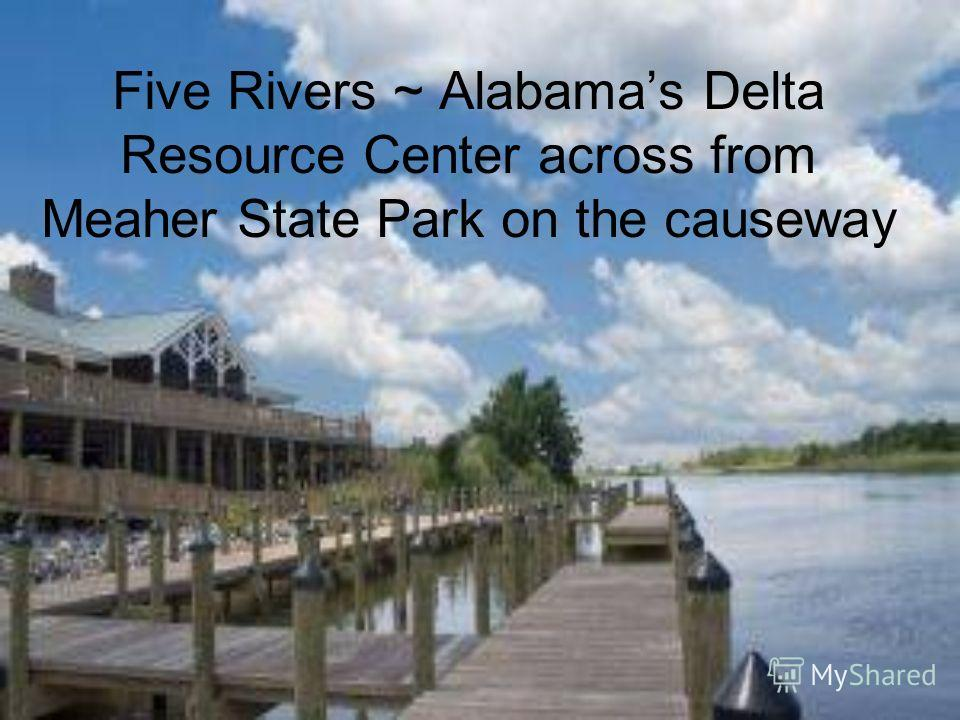 Five Rivers ~ Alabamas Delta Resource Center across from Meaher State Park on the causeway