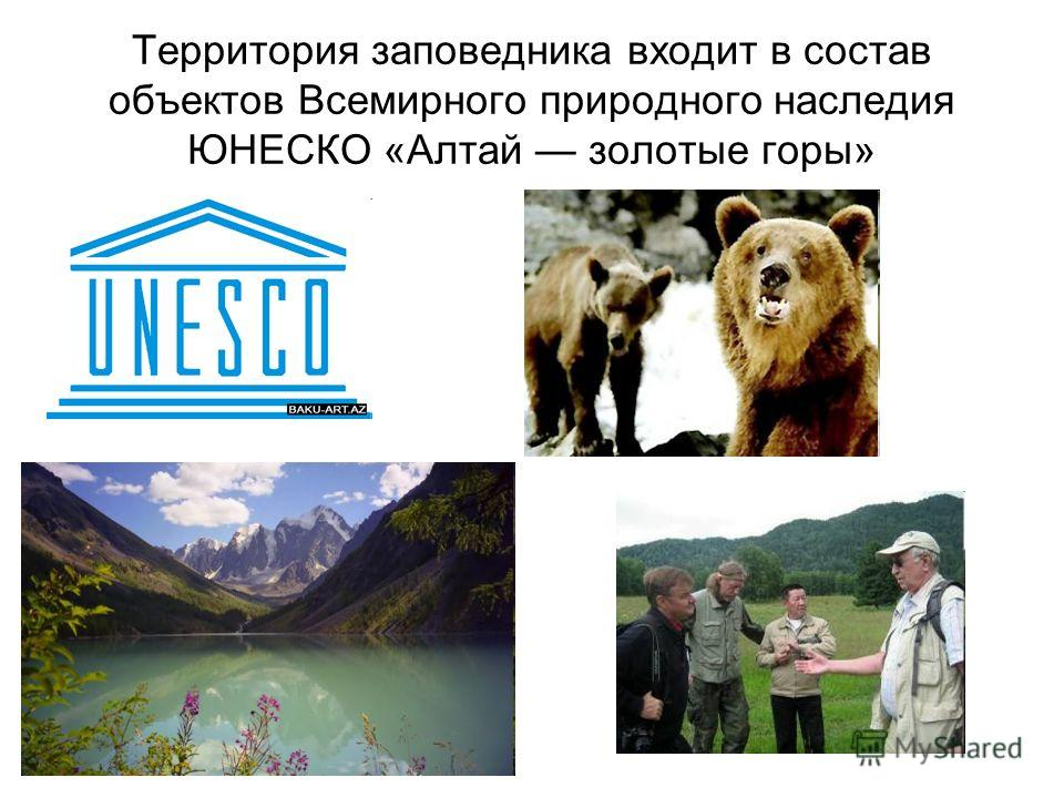 Территория заповедника входит в состав объектов Всемирного природного наследия ЮНЕСКО «Алтай золотые горы»