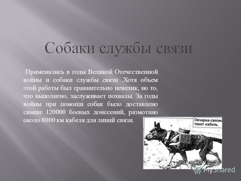 Применялись в годы Великой Отечественной войны и собаки службы связи.Хотя объем этой работы был сравнительно невелик, но то, что выполнено, заслуживает похвалы. За годы войны при помощи собак было доставлено свыше 120000 боевых донесений, размотано о