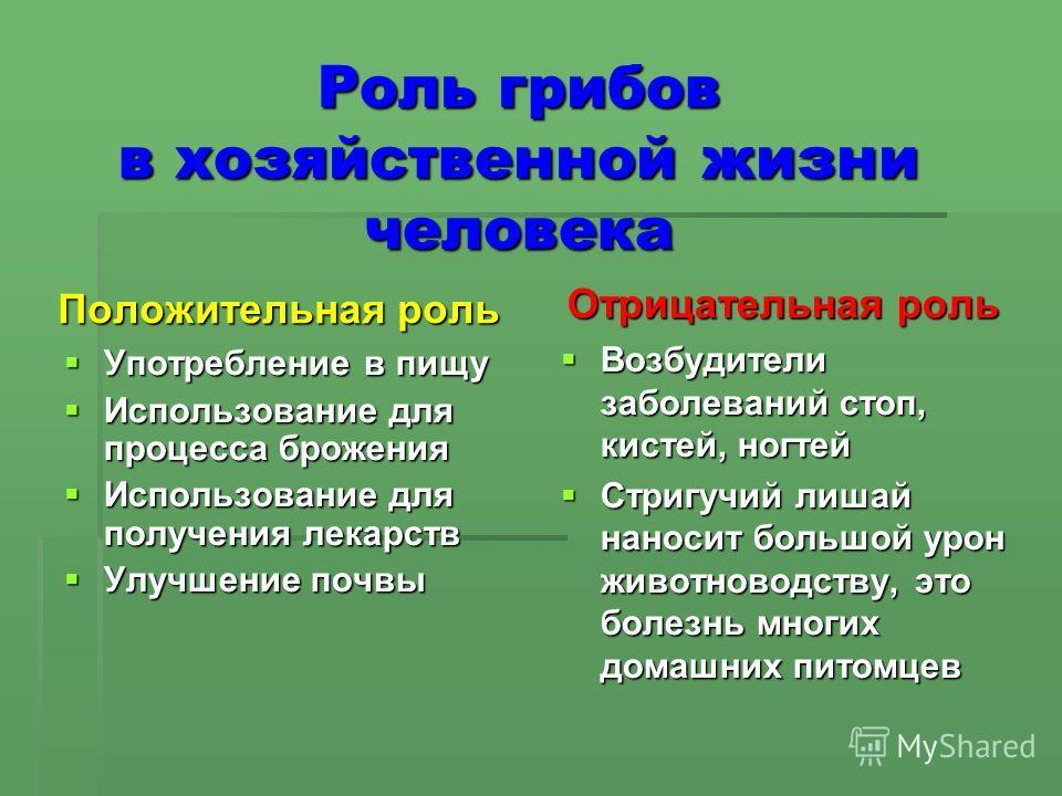 Роль грибов в хозяйственной жизни человека Положительная роль Употребление в пищу Употребление в пищу Использование для процесса брожения Использование для процесса брожения Использование для получения лекарств Использование для получения лекарств Ул