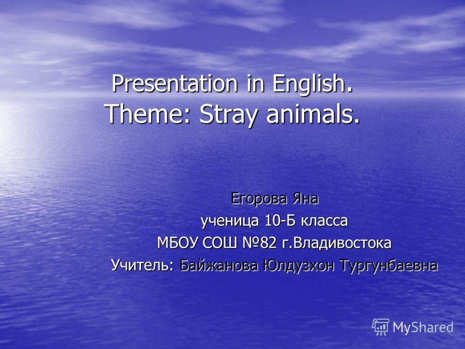 Presentation in English. Theme: Stray animals. Егорова Яна ученица 10-Б класса МБОУ СОШ 82 г.Владивостока Учитель: Байжанова Юлдузхон Тургунбаевна