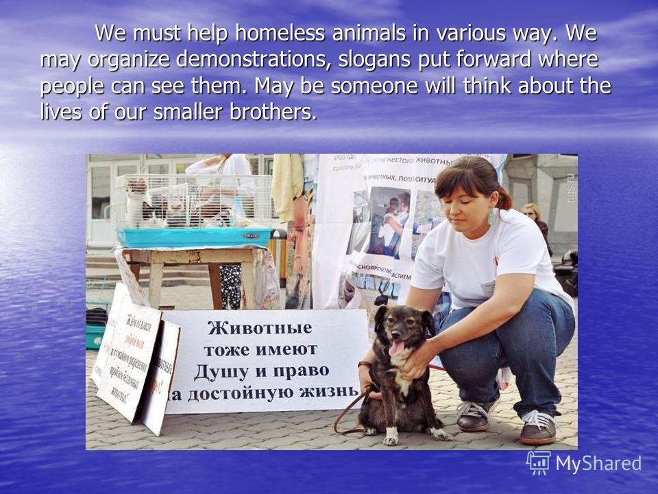 We must help homeless animals in various way. We may organize demonstrations, slogans put forward where people can see them. May be someone will think about the lives of our smaller brothers. We must help homeless animals in various way. We may organ