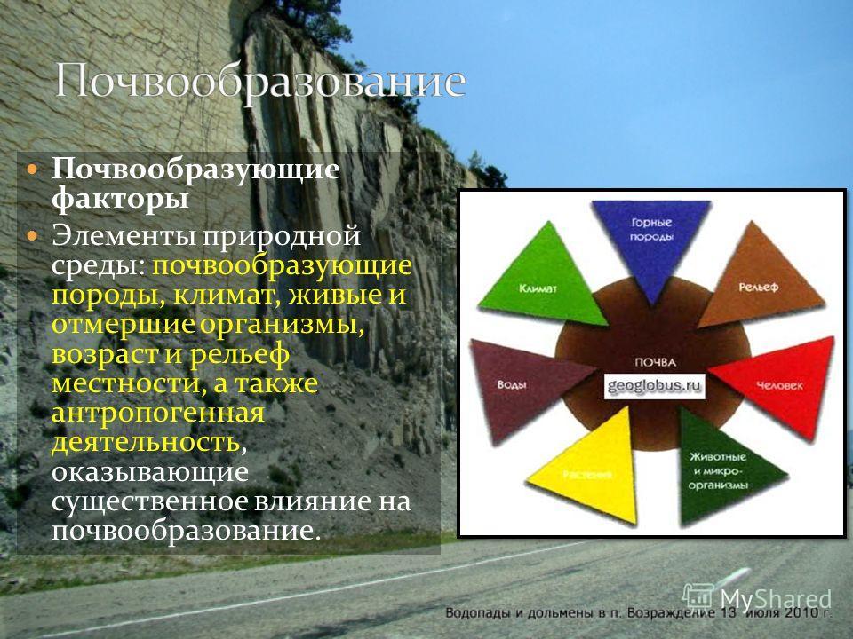 Почвообразующие факторы Элементы природной среды: почвообразующие породы, климат, живые и отмершие организмы, возраст и рельеф местности, а также антропогенная деятельность, оказывающие существенное влияние на почвообразование.