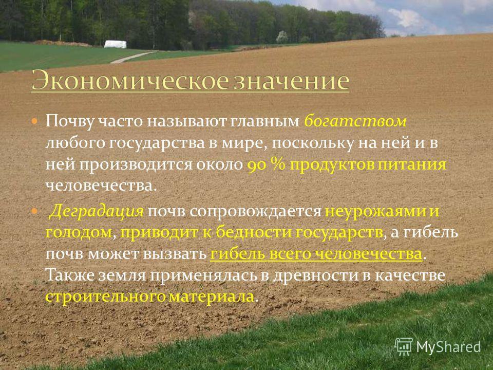 Почву часто называют главным богатством любого государства в мире, поскольку на ней и в ней производится около 90 % продуктов питания человечества. Деградация почв сопровождается неурожаями и голодом, приводит к бедности государств, а гибель почв мож
