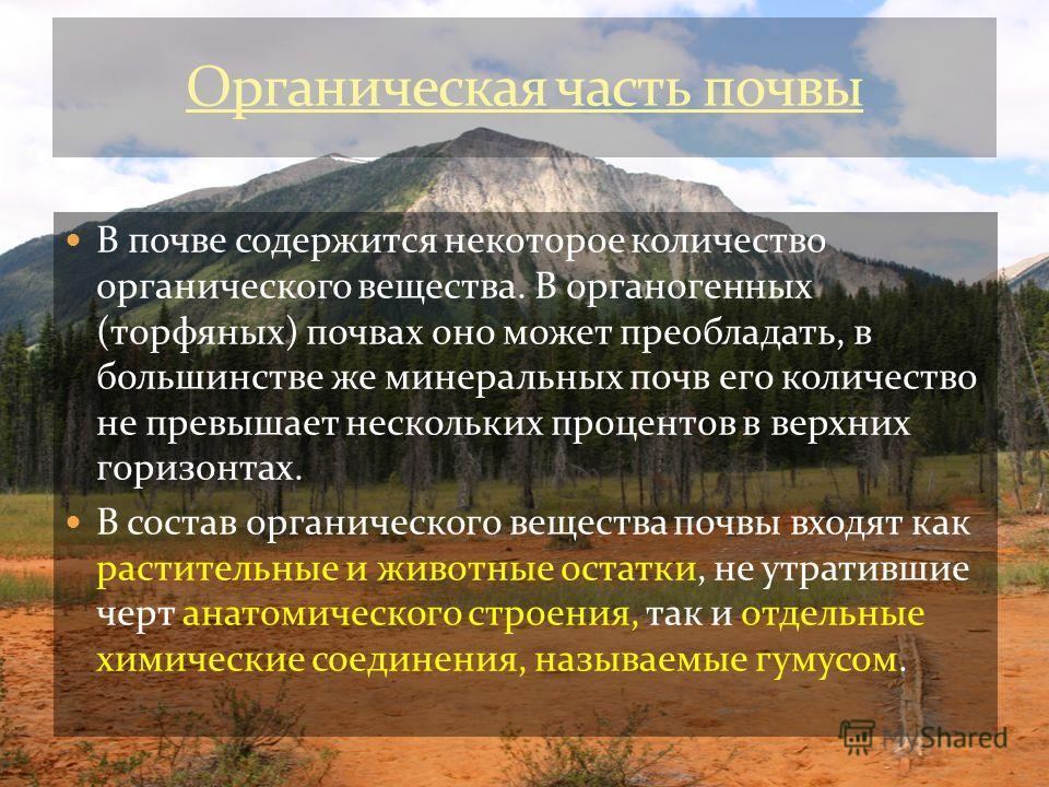 В почве содержится некоторое количество органического вещества. В органогенных (торфяных) почвах оно может преобладать, в большинстве же минеральных почв его количество не превышает нескольких процентов в верхних горизонтах. В состав органического ве