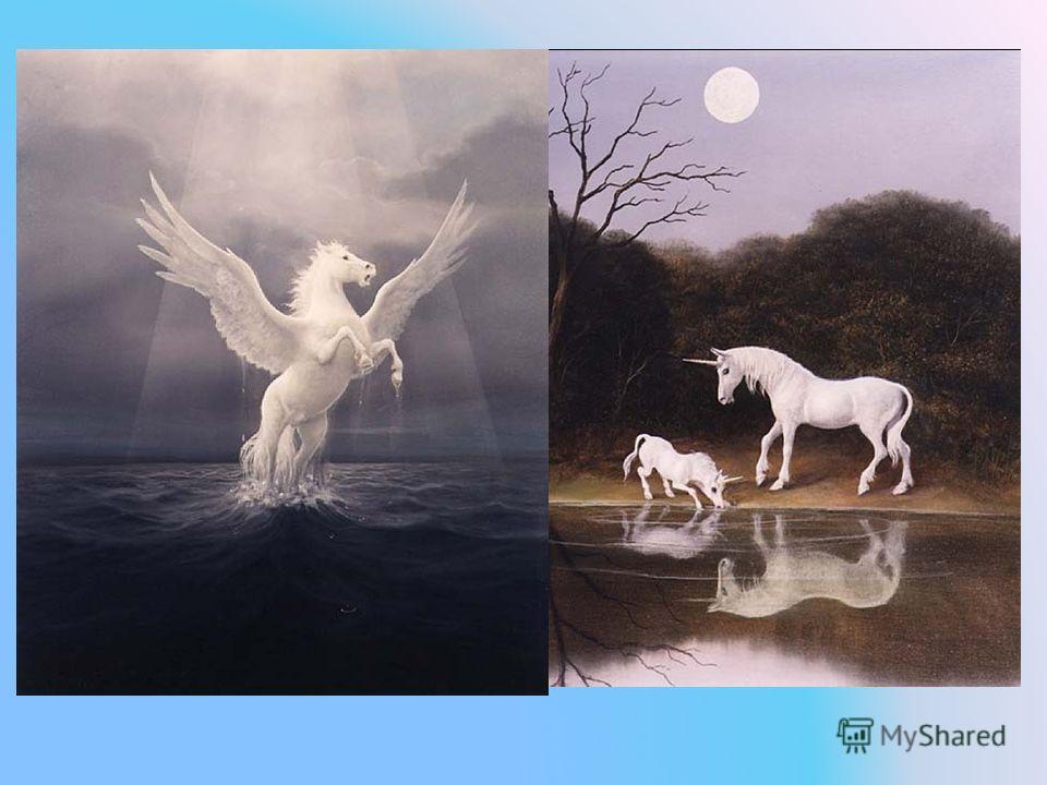 Лошадь с древних времен считали божественным животным. Поэтому в мифах древней Греции и Рима ее изображали как единорога и пегаса.
