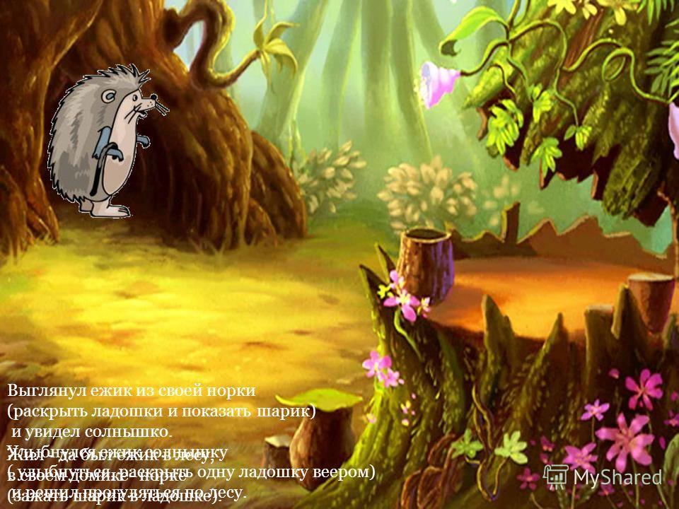 Жил - да был ежик в лесу, в своем домике- норке (зажать шарик в ладошке). Выглянул ежик из своей норки (раскрыть ладошки и показать шарик) и увидел солнышко. Улыбнулся ежик солнышку ( улыбнуться, раскрыть одну ладошку веером) и решил прогуляться по л