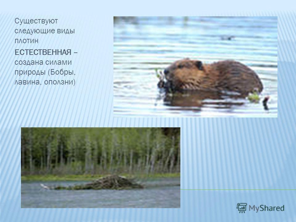 Существуют следующие виды плотин ЕСТЕСТВЕННАЯ – создана силами природы (Бобры, лавина, оползни)