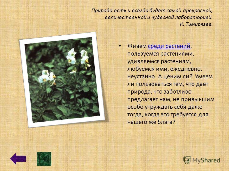 Природа есть и всегда будет самой прекрасной, величественной и чудесной лабораторией. К. Тимирязев. Живем среди растений, пользуемся растениями, удивляемся растениям, любуемся ими, ежедневно, неустанно. А ценим ли? Умеем ли пользоваться тем, что дает