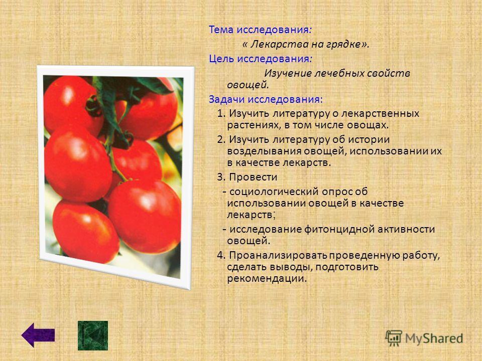 Тема исследования: « Лекарства на грядке». Цель исследования: Изучение лечебных свойств овощей. Задачи исследования: 1. Изучить литературу о лекарственных растениях, в том числе овощах. 2. Изучить литературу об истории возделывания овощей, использова