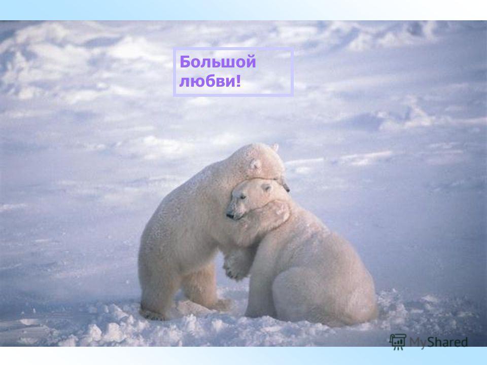 Большой любви!