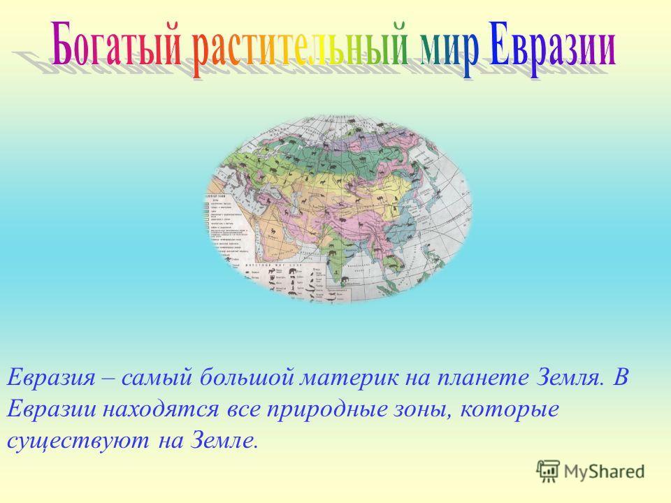 Евразия – самый большой материк на планете Земля. В Евразии находятся все природные зоны, которые существуют на Земле.