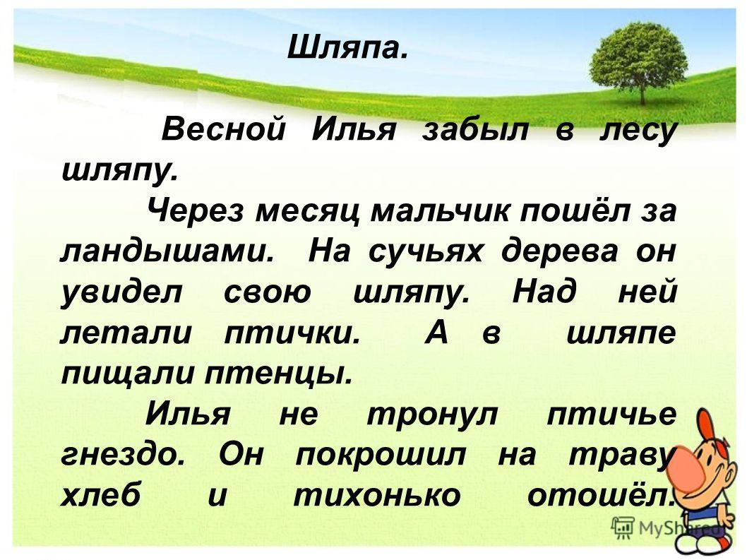 Шляпа. Весной Илья забыл в лесу шляпу. Через месяц мальчик пошёл за ландышами. На сучьях дерева он увидел свою шляпу. Над ней летали птички. А в шляпе пищали птенцы. Илья не тронул птичье гнездо. Он покрошил на траву хлеб и тихонько отошёл.