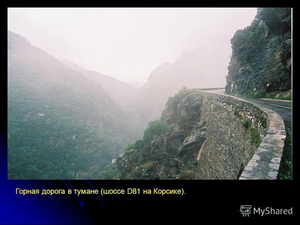 Горная дорога в тумане (шоссе D81 на Корсике).